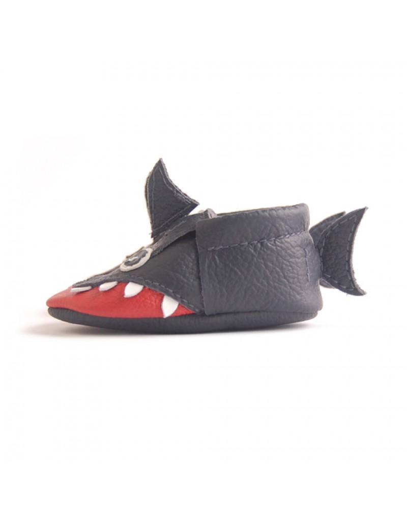 Shark - Animals